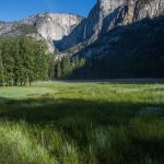 Ahwahnee Meadow