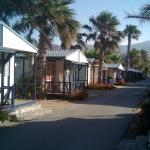 Photo de Camping Don Cactus