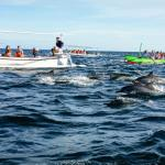 Balinda Rooms & Villas의 사진