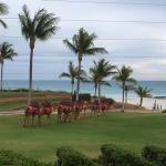 Cable Beach Club Resort & Spa Foto