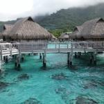 Фотография Sofitel Moorea Ia Ora Beach Resort