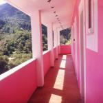 The Pink Palace resmi