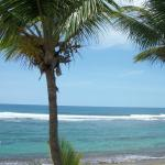 Villa Tropical Oceanfront Apartments on Shacks Beachの写真
