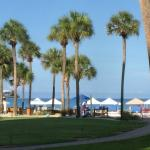 Sarasota Surf and Racquet Club의 사진