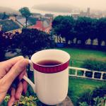 view from my teacup in the Panorama B&B @instakasiagram