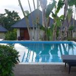 A typical villa on Mangoes Resort, each with their own small pool, plus so