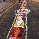 Many roads filled with beautiful floral displays