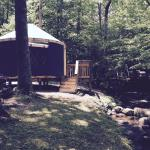 Great Smoky Jellystone Camp-Resort resmi