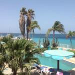 Φωτογραφία: Bonaire Oceanfront Apartments