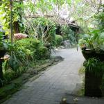Photo de Dusun Jogja Village Inn