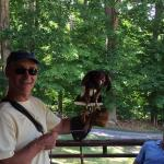 Falconry lesson was great !