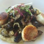Sea scallops with corn and mushrooms at Aquarius