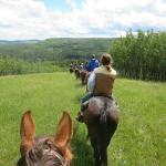Homeplace Ranch Foto