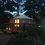 A yurt in the woods.