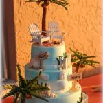Cake Concepts of Port Charlotte made our cake