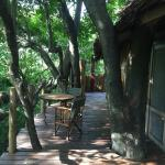 andBeyond Lake Manyara Tree Lodge의 사진