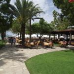 Photo de Barut Hemera
