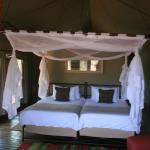 Photo de Ongava Tented Camp