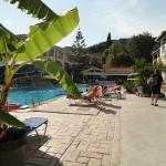 hotel grounds/pool