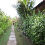 Lembongan Tropical Guest House照片