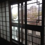 view of the cherry blossoms along kamogawa river from our window