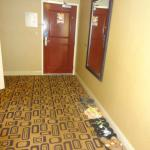 Entry into the room vary spacious