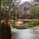 Embassy Suites by Hilton Chicago - Lombard/Oak Brook Foto