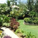 View of Grounds from Almond Suite Veranda