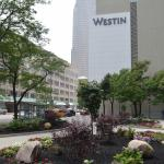 Exterior of The Westin