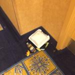 This was in the hallway for HOURS. I realize this was left by a guest, but housekeeping was defi