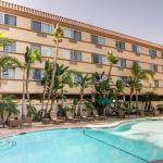 Foto de Comfort Inn & Suites Zoo / SeaWorld Area