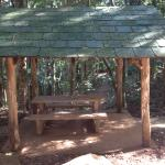 Tanglewood Gardens - rainforest shelter