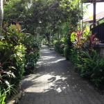 beautiful pathway to rooms