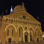 Basilica by night