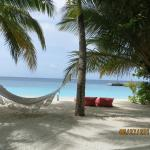 Photo de Mirihi Island Resort