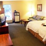 Hampton Inn Columbus South Foto