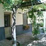Photo of Bungalows 313