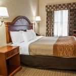 Photo of Comfort Inn Indianapolis-Carmel