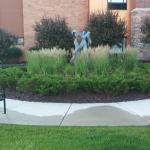 Foto Homewood Suites Minneapolis - St Louis Park at West End