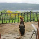 Lodges on Loch Ness resmi