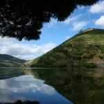 Photo de Six Senses Douro Valley