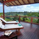 Kupu Kupu Barong Villas & Tree Spa