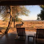 Madikwe Hills Private Game Lodge resmi
