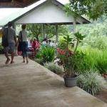 Foto de Pondok Senaru Cottages