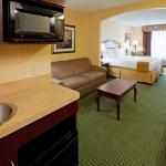Photo of Holiday Inn Express & Suites Binghamton University-Vestal