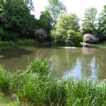 Beautiful lakeside and fountain in extensive grounds