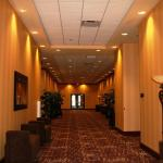 Photo of Embassy Suites by Hilton Minneapolis - North