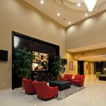 Holiday Inn Mobile Airport Foto