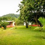 Cocoa Village Guesthouse照片