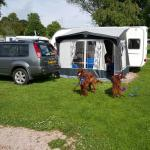 The great place to stay with dogs children and family well recommended